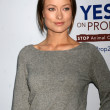 Olivia Wilde - Stock Photo