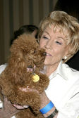 Jeanne Cooper & Lee Bell's dog Joy — Stock Photo