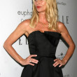 Nicollette Sheridan - Stock Photo