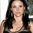 Julia Louis-Dreyfus - Stock Photo