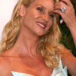 Nicolette Sheridan — Stock Photo