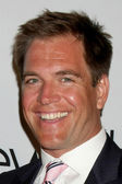 Michael Weatherly — Stock Photo