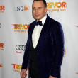 David Furnish - Stock Photo