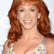 Stock Photo: Kathy Griffin