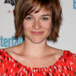 Renee Felice Smith - Stock Photo