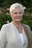 Dame Judi Dench — Stock Photo