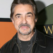 Joe Mantegna - Stock Photo
