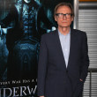 Постер, плакат: Bill Nighy