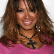Traci Bingham - Stock Photo