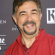 Stock Photo: Joe Mantegna