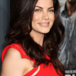 Michelle Monaghan — Stock Photo #13103796