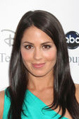 Michelle Borth — Stock Photo