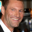 Aaron Eckhart — Stock Photo