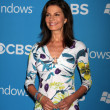 Sela Ward — Stock Photo #13124771