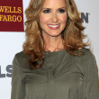 Stock Photo: Chely Wright