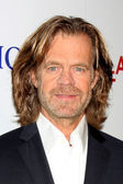 William H Macy — Stock Photo