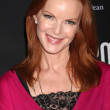 Marcia Cross — Stockfoto