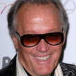 Peter Fonda — Stock Photo