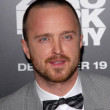 Aaron Paul — Foto Stock