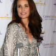Andie MacDowell — Stock Photo #18349529