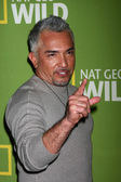 Cesar Millan — Stock Photo