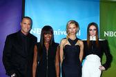 Nigel Barker, Naomi Campbell, Karolina Kurkova and Coco Rocha — Stock Photo