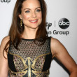 Kimberly Williams-Paisley — Photo