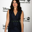 Casey Wilson — Stock Photo #18655847