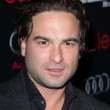 Постер, плакат: Johnny Galecki