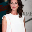 Постер, плакат: Michelle Fairley