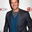 Armie Hammer — Stock Photo