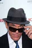Robert Davi — Stock Photo