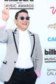 Psy . — Stock Photo
