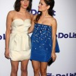 Stock Photo: Aubrey Plaza, Rachel Bilson