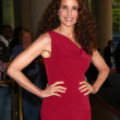 Andie MacDowell — Stock Photo