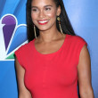 Joy Bryant — Photo