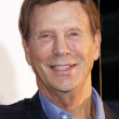 Bob Einstein — Stock Photo