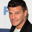David Boreanaz — Stock Photo
