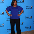 Chandra Wilson — Foto Stock