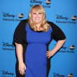 Rebel Wilson — Foto Stock