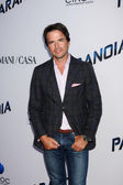 Matthew Settle — Stock Photo