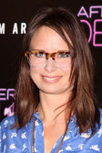 Mary Lynn Rajskub — Stock Photo