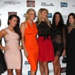 Постер, плакат: Kim Richards Kyle Richards Yolanda Foster Lisa Vanderpump and others