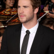 Liam Hemsworth — Foto de Stock