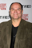 John Kapelos — Stock Photo
