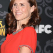 Stock Photo: Molly Shannon