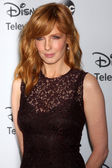 Kelly Reilly — Stock Photo