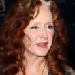 Bonnie Raitt — Stock Photo #39745439