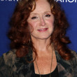 Bonnie Raitt — Stock Photo #39745493