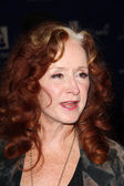 Bonnie Raitt — Stock Photo